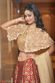Mehek in Designer Ethnic Crop Top and Skirt Stunning Pics March 2017 046.JPG
