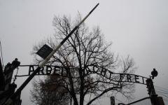 πολωνικά στρατόπεδα θανάτου