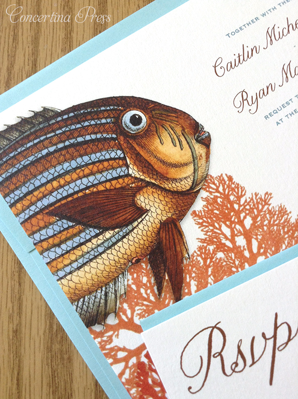Parrotfish tropical wedding invitations from Concertina Press