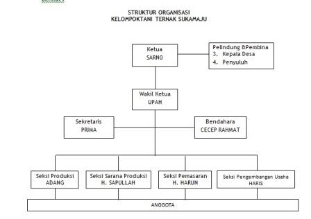 Agung Hary Purnomo Contoh Proposal Studi Kelayakan Bisnis