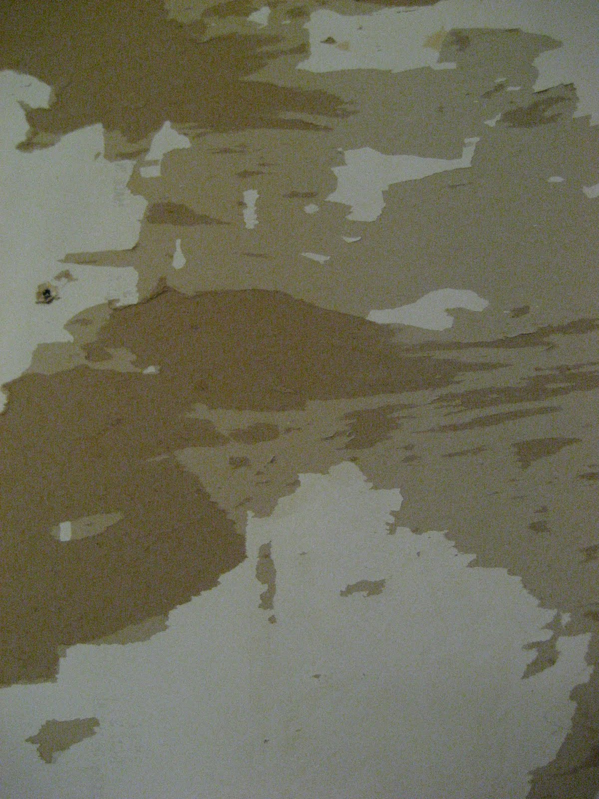new-blog-pics: Wallpaper Off Drywall