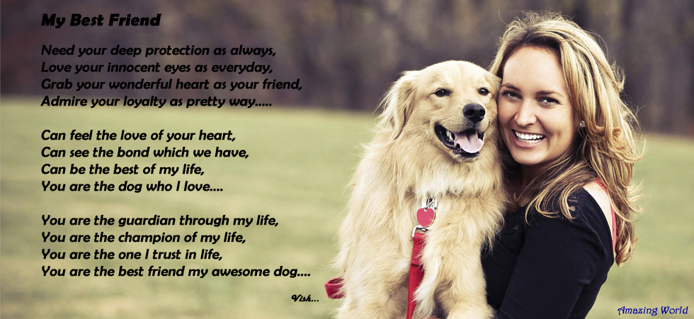 The Amazing World: Poem of The Day - My Best Friend