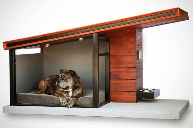 modern-pet-kennel