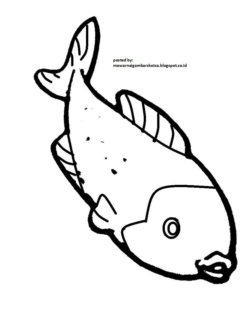 Mewarnai Gambar Mewarnai Gambar Sketsa Hewan Ikan 4 – Cuitan