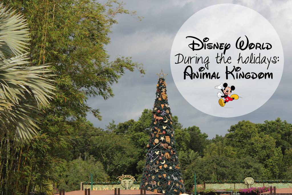 Simply Sinova Disney During The Holidays Animal Kingdom