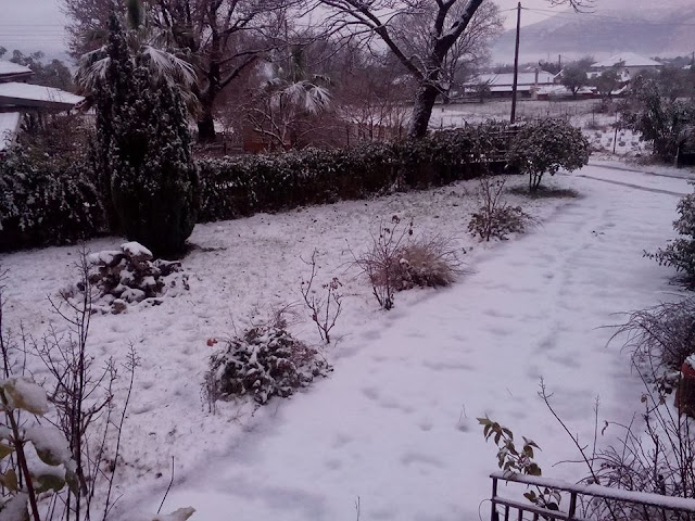 Το χιονισμένο Προδρόμι Παραμυθιάς (4 ΦΩΤΟ)