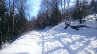 Дорога для фатбайка