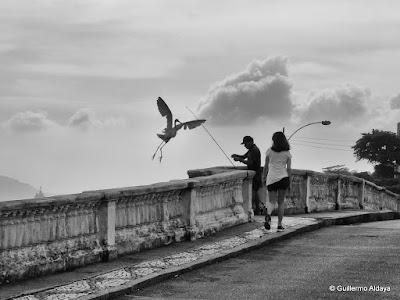 In Urca (Rio de Janeiro, Brazil), by Guillermo Aldaya / AldayaPhoto