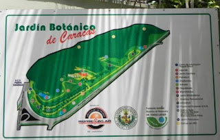 Horario y entradas al Parque Jardín Botánico de Caracas (Actualizado). Costo de las entradas al Parque Jardín Botánico de Caracas. Tarifas al Parque Jardín Botánico de Caracas (UCV).