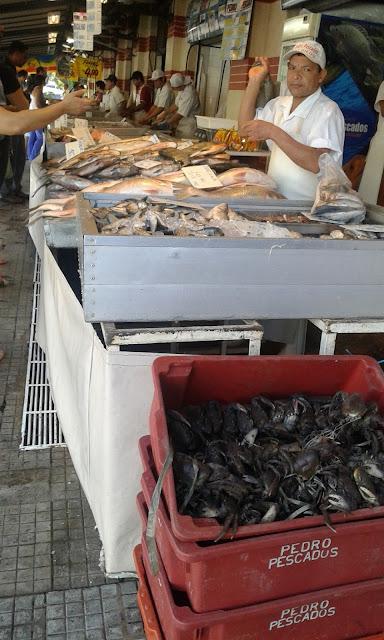 Peixaria do Mercadão Municipal de Campinas