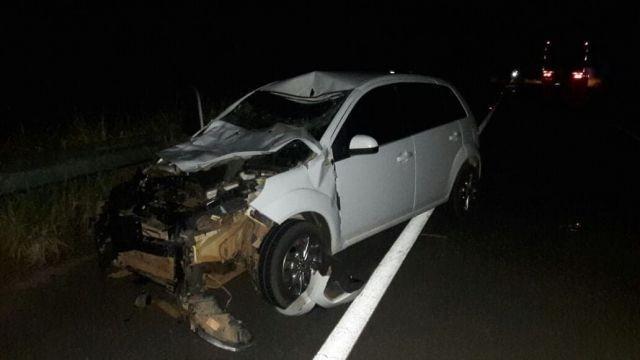 Animal na pista causa acidente na BR 429, próximo de Seringueiras