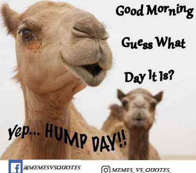 What day it is