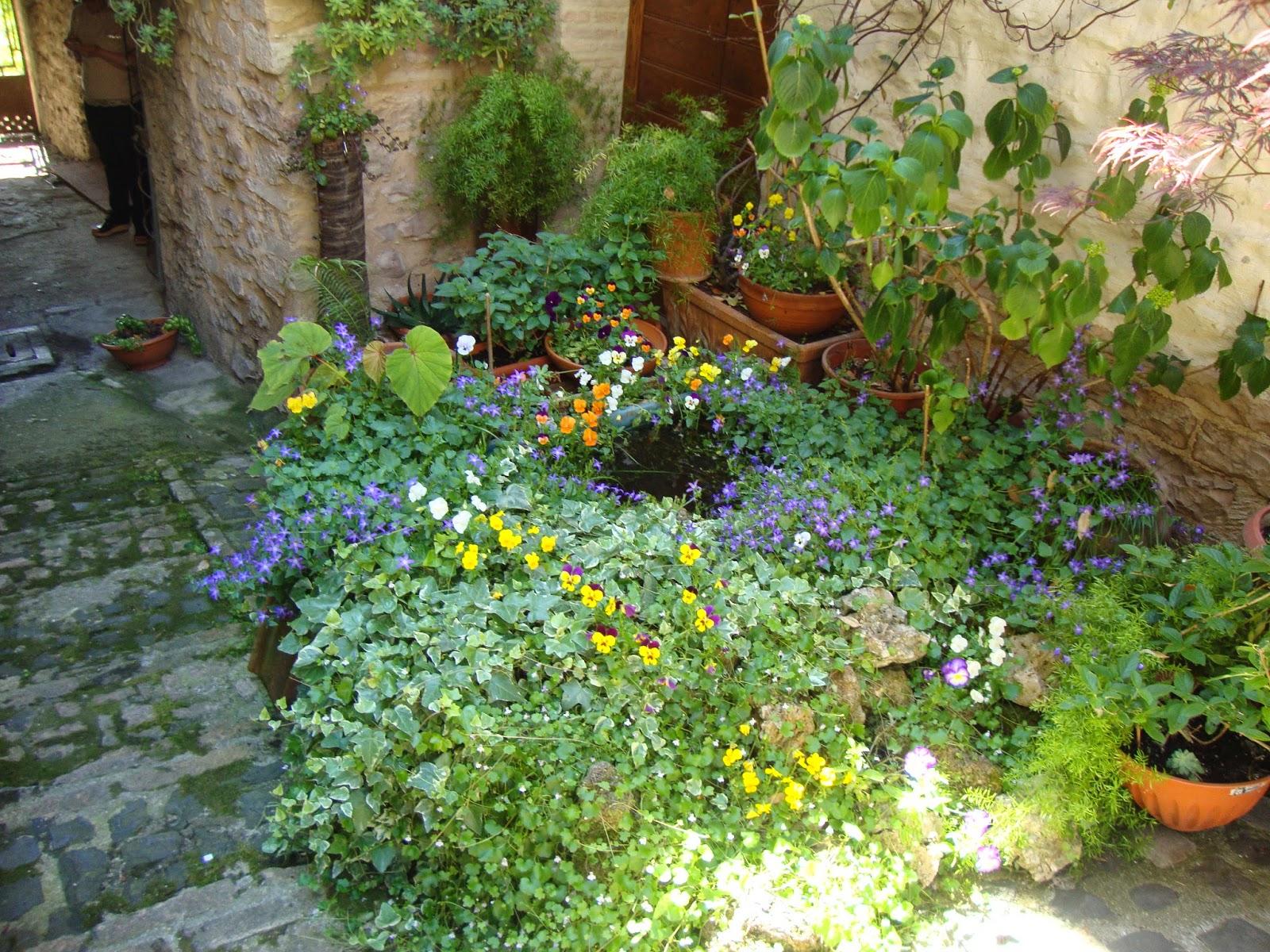 Un piccolo giardino in citt il giardiniere umbro non si for Allestire piccoli giardini