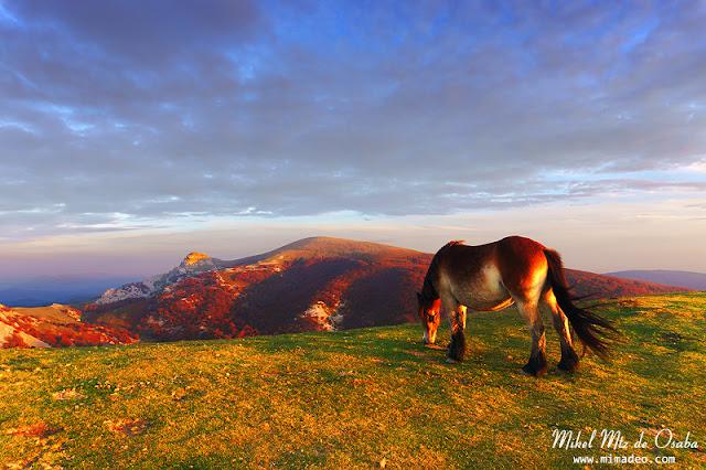 Gorbea con caballo en la cima del Ipergorta