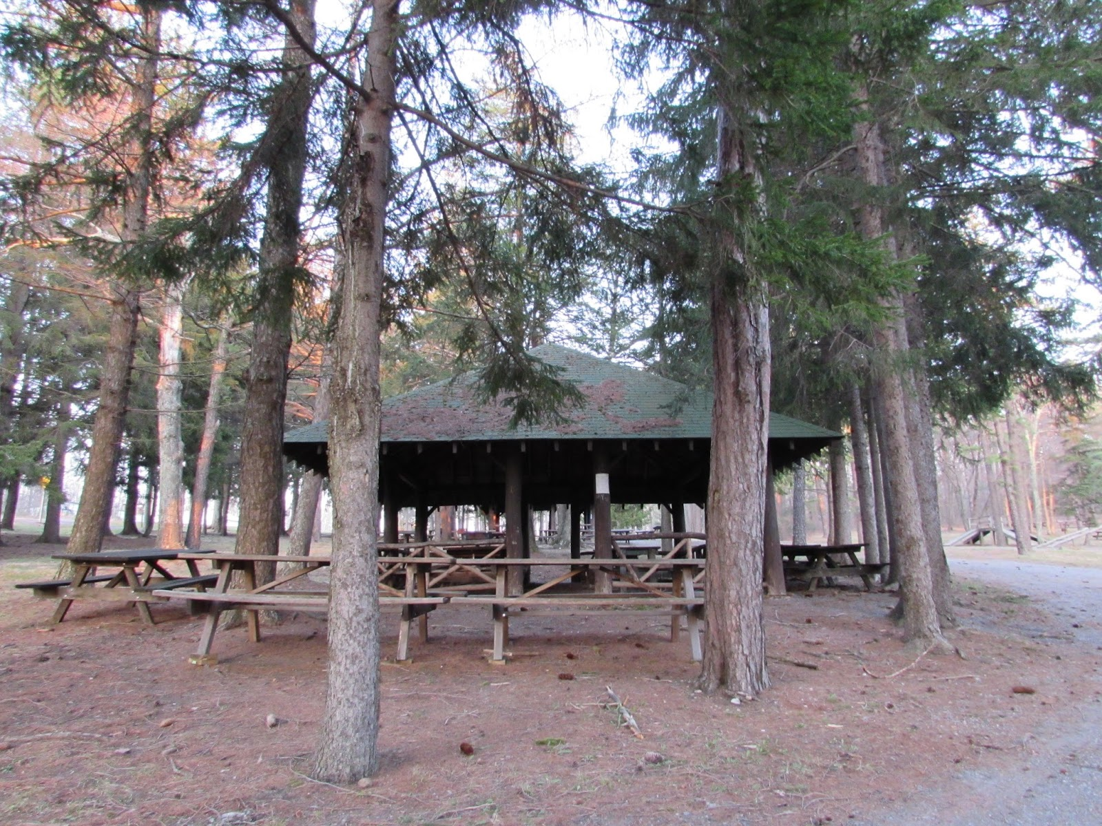 Buchanan State Forest, Ruffed Grouse, Old CCC Camp, & Scenic