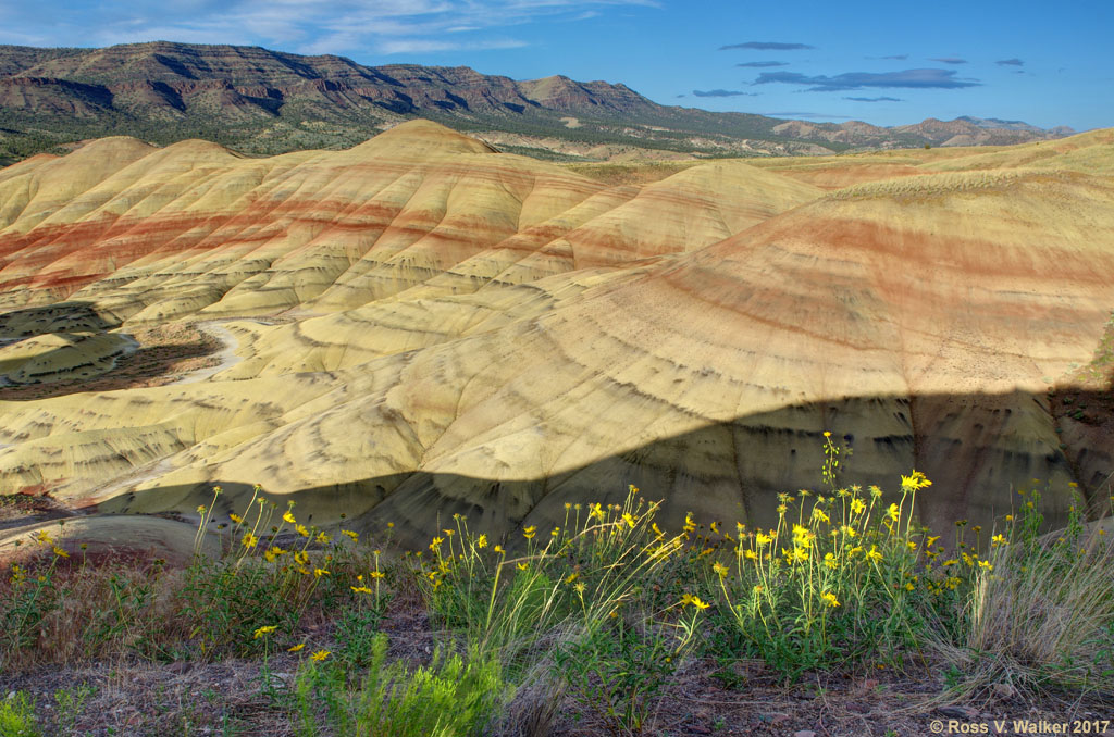 Red Hill Painted Hills Oregon
