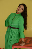 Geethanjali in Green Dress at Mixture Potlam Movie Pressmeet March 2017 029.JPG