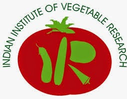 IIVR Recruitment 2018 www.iivr.org.in Young Professional I & II – 10 Posts Last Date 05-05-2018 – Walk in