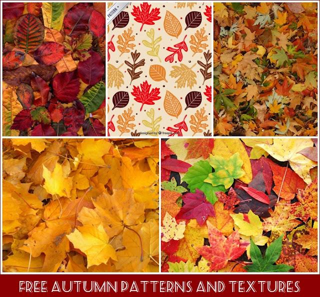 Осенние текстуры и паттерны