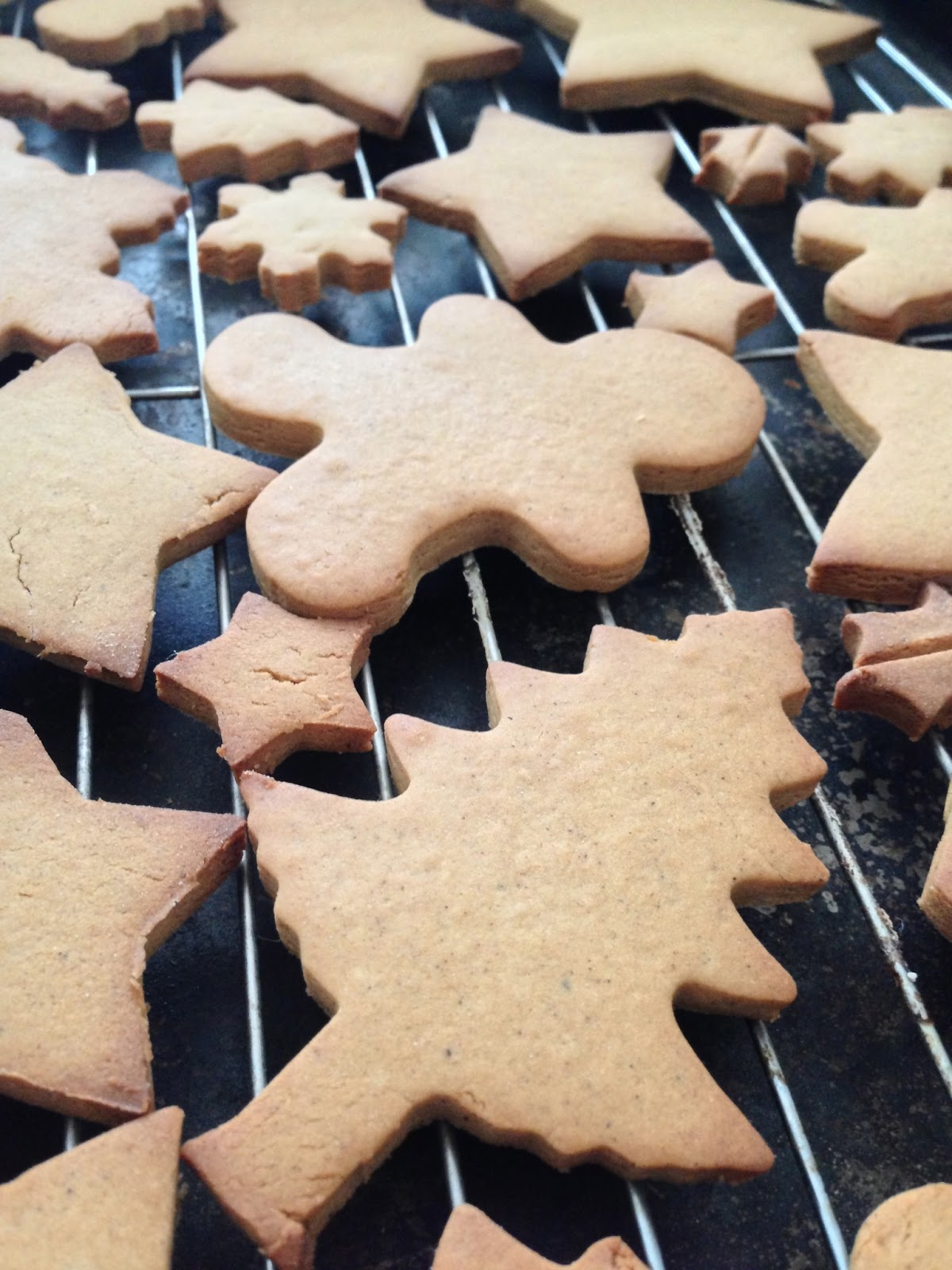 Homemade Gingerbread cookies with Martha Stewart Recipe