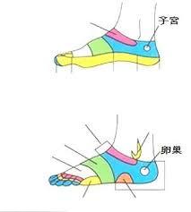 子宮穴位置 | 子宮穴痛 - 穴道按摩與穴位引導經絡功效圖解 - 穴道經絡引導