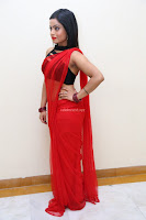 Aasma Syed in Red Saree Sleeveless Black Choli Spicy Pics ~  Exclusive Celebrities Galleries 044.jpg
