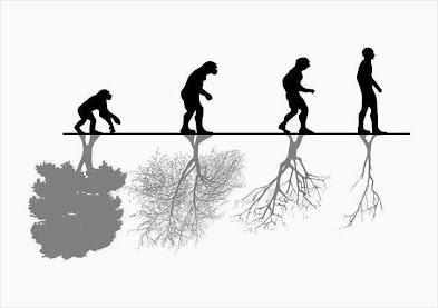 Faktor yang Mempengaruhi Evolusi