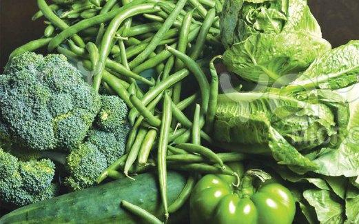 Image result for sayuran hijau images