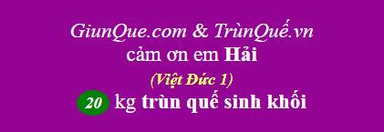 Trùn quế Việt Đức 1