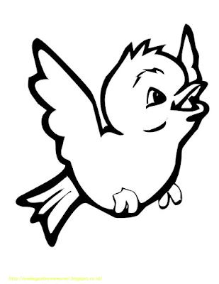 Gambar Mewarnai Burung - 5