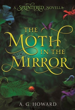Buy The Moth in the Mirror on Amazon