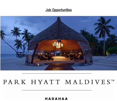 Job Maldives: Carpenter Job Vacancy at Park Hyatt Maldives