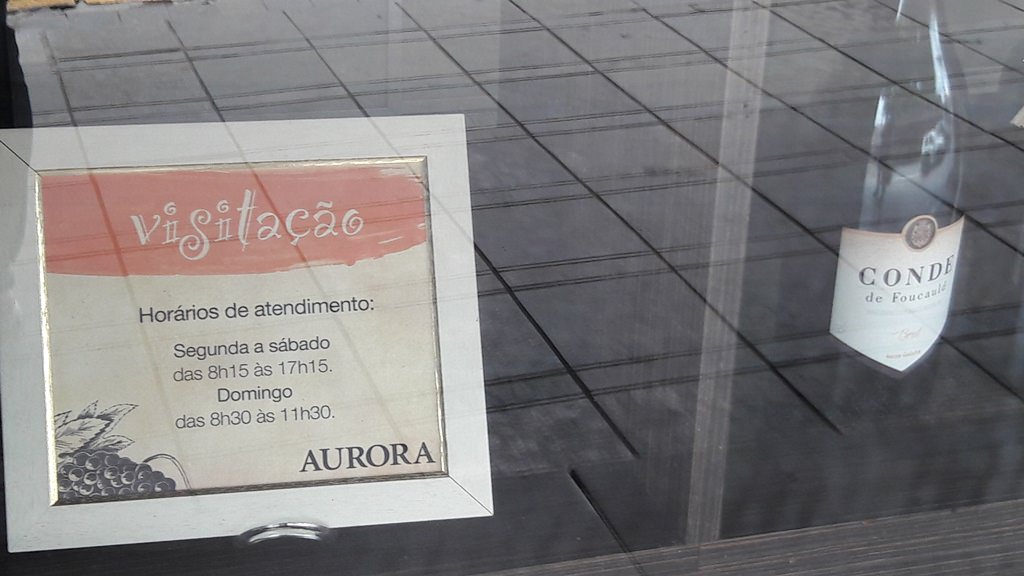 Visita à Vinícola Aurora