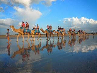 All About Bali Camel Safari