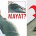 Ada Mayat Diatas Kubah Masjid Nabawi? Inilah Faktanya