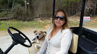 woman on golf cart with her dog