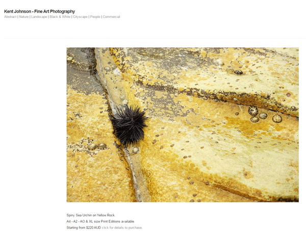 Screen shot of the website Kent Johnson - Spiny Sea Urchin on Yellow Rock.- Fine Art Photography.
