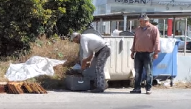 Καταστροφή: Πέταξαν ζωντανά μελίσσια σε κάδους σκουπιδιών. Οι μελισσοκόμοι προσπαθούν να σώσουν τα μελίσσια μέσα απο τους κάδους