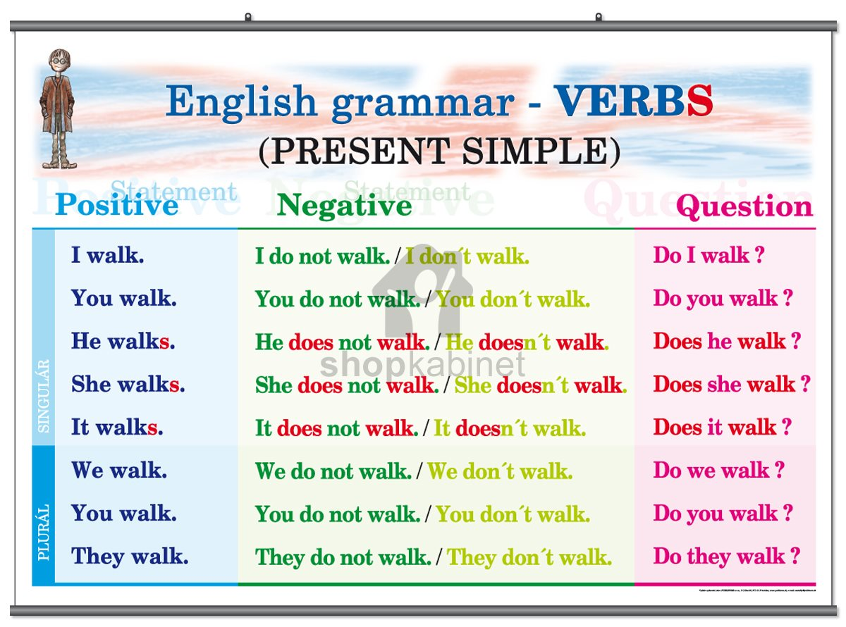 Present Simple Tense The Present Simple Affirmative Form