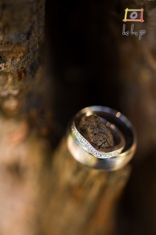 An extreme close up of the wedding rings