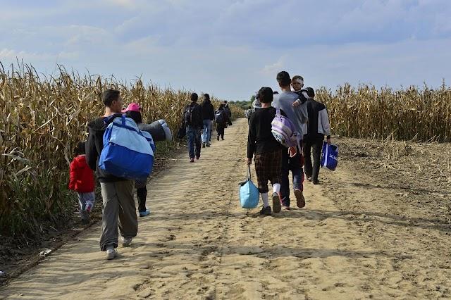 Embercsempész csoportot számoltak fel Belgiumban és Portugáliában