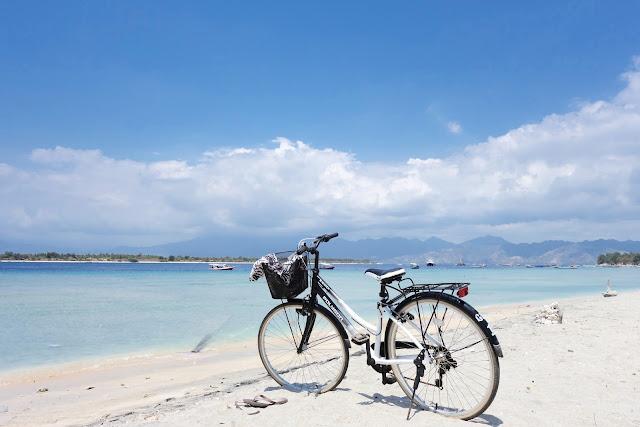 ركوب الدراجات والخيل