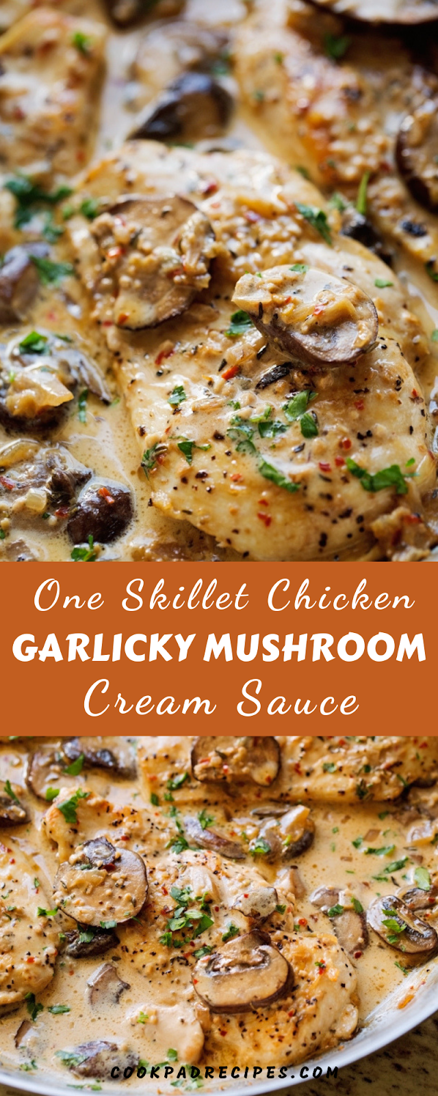 ONE SKILLET CHICKEN WITH GARLICKY MUSHROOM CREAM SAUCE