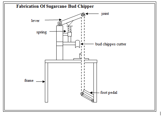 FABRICATION OF SUGARCANE BUD CHIPPER