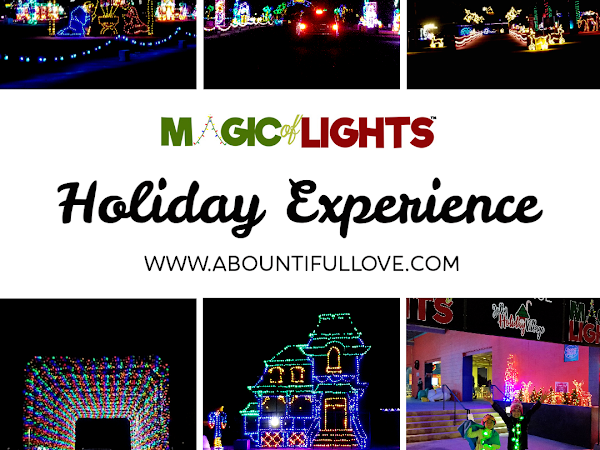 Magic of Lights- Holiday Experience