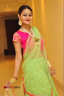 Model Nilofer Haidry Stills in Green Saree at Trendz Exhibition and Sale 2016  0037.JPG