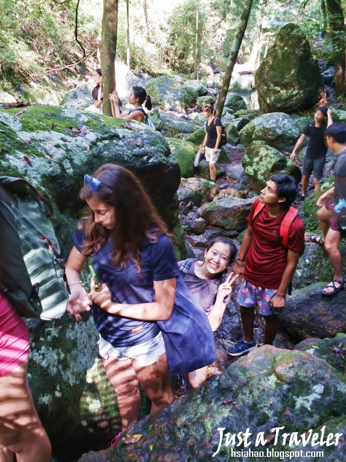 布里斯本-國家公園-登山-爬山-Kondalilla-National-Park-Brisbane