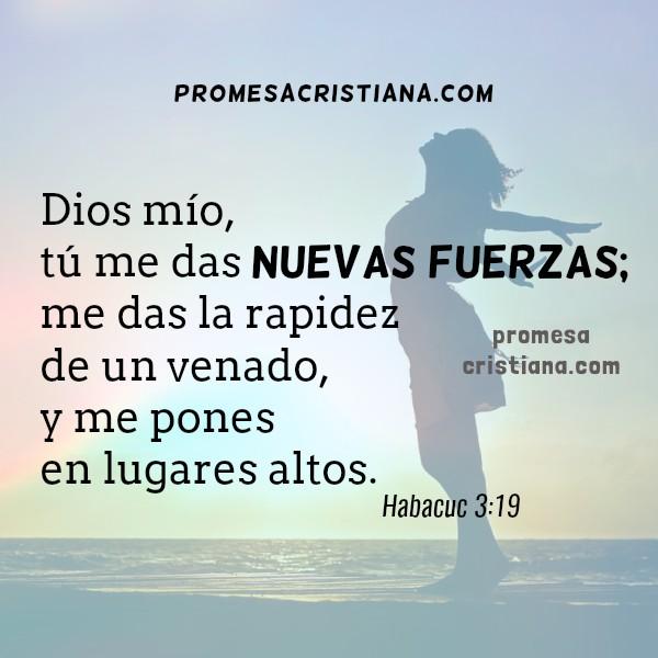 versiculo promesa cristiana fuerza fortaleza de Dios