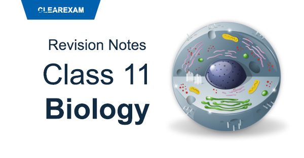 CBSE Class 11 Biology Revision Notes