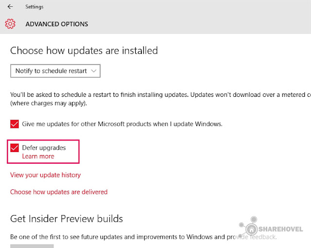 Defer Upgrades - Cara Mudah Menonaktifkan Windows Auto Update di Windows 10 - by sharehovel